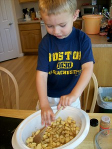 mixing the apples, cinnamon, and water