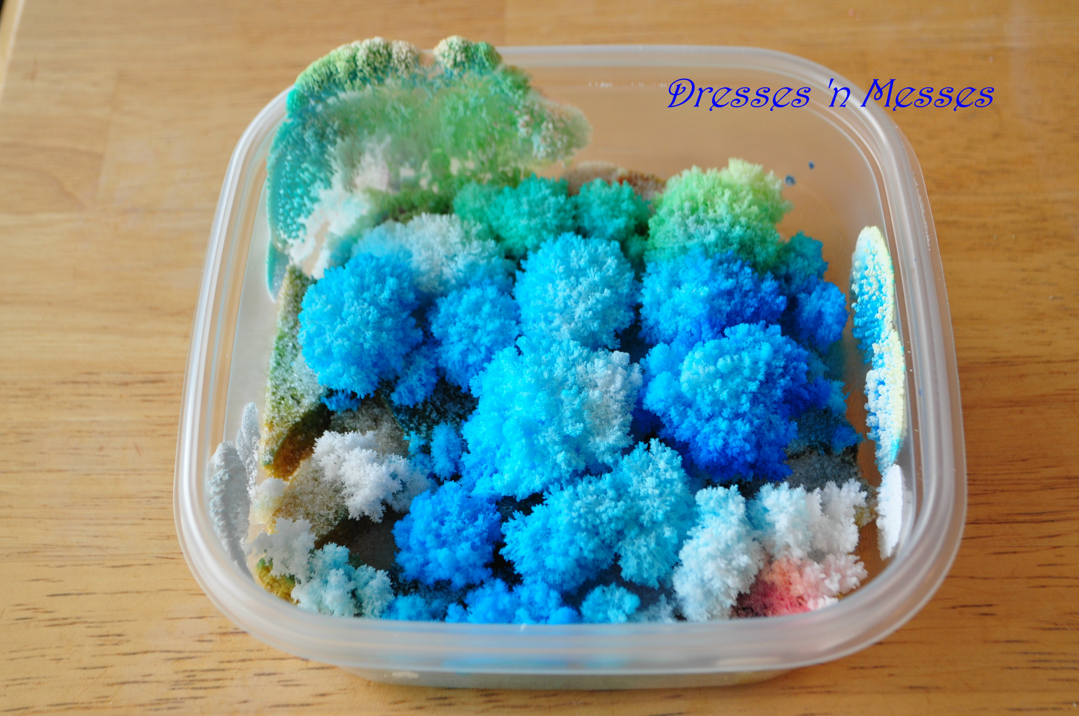 How To Grow Beautiful Crystals With Epsom Salt Ehow Party Invitations Ideas